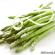 Vilken mat är godkänd LCHF-mat?