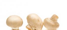 Svamp kan du äta när du äter LCHF